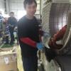 Tuyển gấp 2 nam xuất khẩu lao động Nhật Bản, quấn mô tơtại Okayama