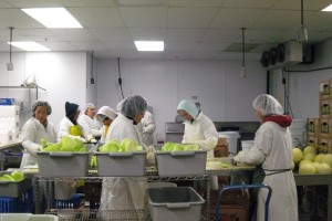 Hàng ngàn người lựa chọn đi xuất khẩu lao động tại Hoàng Long CMS