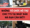 Những tổ chức hỗ trợ cho TTS Việt Nam tại Nhật Bản mà bạn cần biết!
